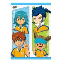 Short Split Curtains - Inazuma Eleven GO / All Characters (Inazuma Eleven)