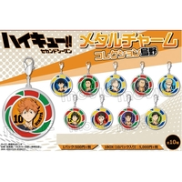 Charm Collection - Metal Charm - Haikyuu!! / Karasuno High School