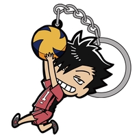Tsumamare Key Chain - Haikyuu!! / Kuroo & Karasuno High School