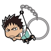 Tsumamare Key Chain - Haikyuu!! / Karasuno High School & Iwaizumi