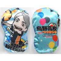 Die-cut Cushion - Haikyuu!! / Karasuno High School & Sugawara