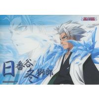 Model Sheet - Bleach / Hitsugaya Toushirou