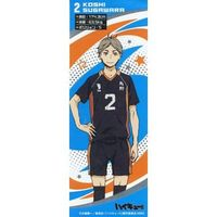 Metal Stickers - Haikyuu!! / Sugawara Koushi