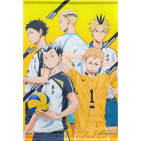 Tapestry - Haikyuu!!