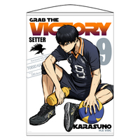 Tapestry - Haikyuu!! / Karasuno High School & Kageyama