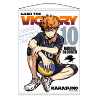 Tapestry - Haikyuu!! / Karasuno High School & Hinata