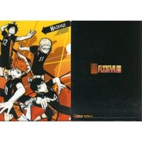Plastic Folder - Haikyuu!! / Karasuno High School