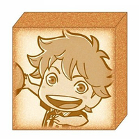 Cushion Badge - Haikyuu!! / Hinata Shoyo