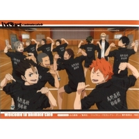 Portrait - Haikyuu!! / Karasuno High School