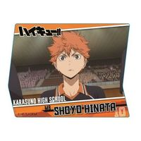 Acrylic Badge - Haikyuu!! / Hinata & Karasuno High School
