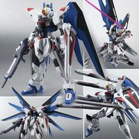 THE ROBOT SPIRITS - Mobile Suit Gundam SEED
