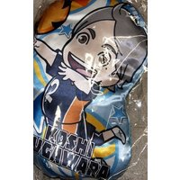 Cushion - Haikyuu!! / Sugawara Koushi