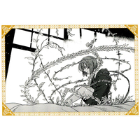 Postcard - The Ancient Magus' Bride / Hatori Chise