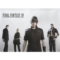 Poster - Final Fantasy Series