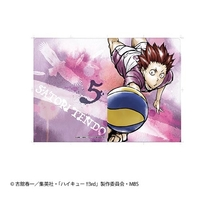 Plastic Folder - Haikyuu!! / Tendou Satori