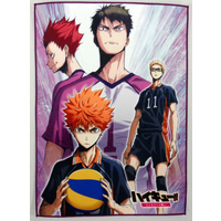 Muffler Towel - Haikyuu!! / Shiratorizawa Academy & Karasuno High School