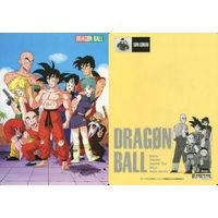 Plastic Sheet - Dragon Ball