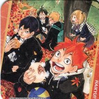 Coaster - Haikyuu!! / Karasuno High School