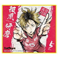 Trading Illustration Card - Haikyuu!! / Kozume Kenma