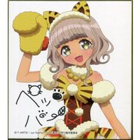 Illustration Panel - PriPara