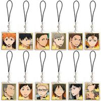 (Full Set) Yawaraka Clear Strap - Haikyuu!!