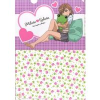 Plastic Folder - To Aru series / Mikoto Misaka