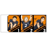 Eraser - Haikyuu!! / Karasuno High School