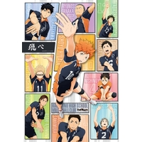 Jigsaw puzzle - Haikyuu!! / Karasuno High School