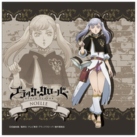 Towels - Black Clover / Noelle Silva