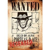 Poster - ONE PIECE / Ace