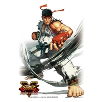 Card Sleeves - Street Fighter / Ryu