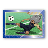 Badge - Inazuma Eleven Series