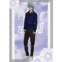 Plastic Sheet - Prince Of Tennis / Niou Masaharu