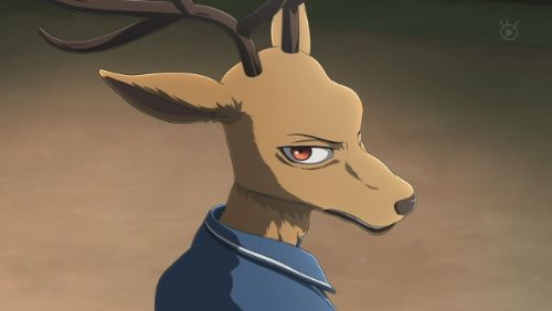 Louis, personaje de Beastars