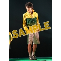Portrait - Prince Of Tennis / Zaizen & Seishun Gakuen & Rikkai University of Junior High School