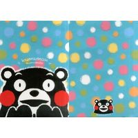 Plastic Folder - Kumamon