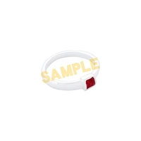 Ring - Bungou Stray Dogs / Nakahara Chuuya Size-9