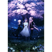 Plastic Folder - Fate/stay night / Sakura & Saber Alter & Rider