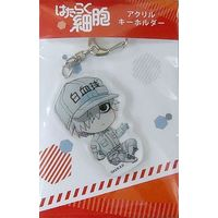 Acrylic Key Chain - Hataraku Saibou (Cells at Work!) / White Blood Cell