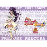 Plastic Folder - PreCure Series / Cure Eaglet