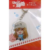 Acrylic Key Chain - Hataraku Saibou (Cells at Work!) / Platelet