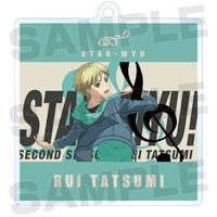 Trading Acrylic Key Chain - Star-Myu (High School Star Musical) / Tatsumi Rui (Star-Mu)