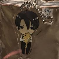Trading Acrylic Key Chain - Fruits Basket / Souma Hatori