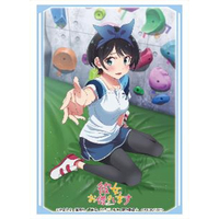 Card Sleeves - Rent-A-Girlfriend / Sarashina Ruka