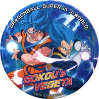 Badge - Dragon Ball / Vegeta & Goku
